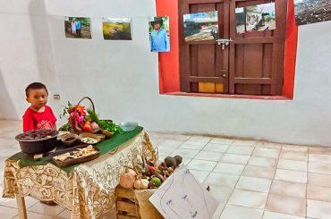 yucatan-centro