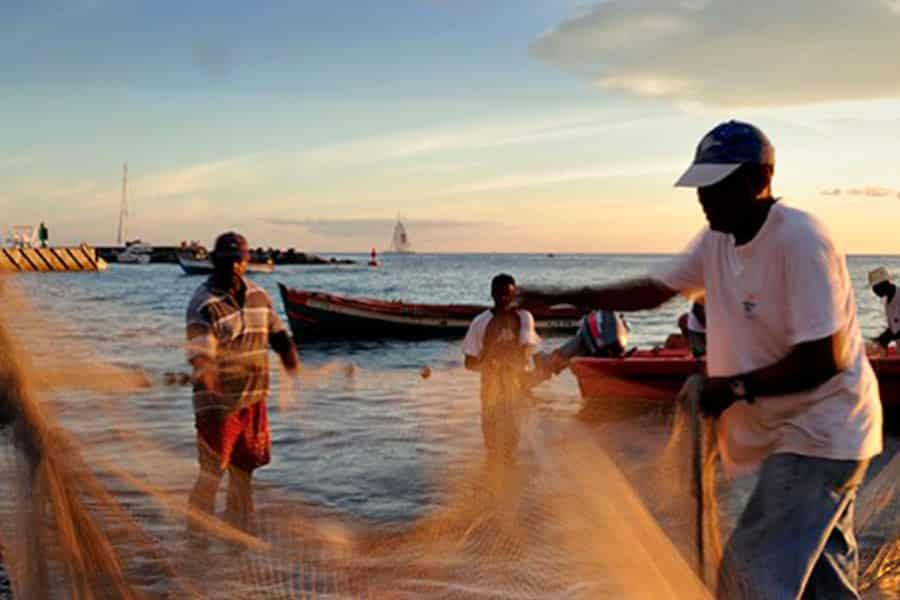 Promover soluciones basadas en los conocimientos indígenas y locales para responder a los impactos y a las vulnerabilidades relacionadas con el cambio climático